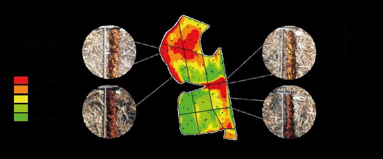 mapeamento e classificação de solo